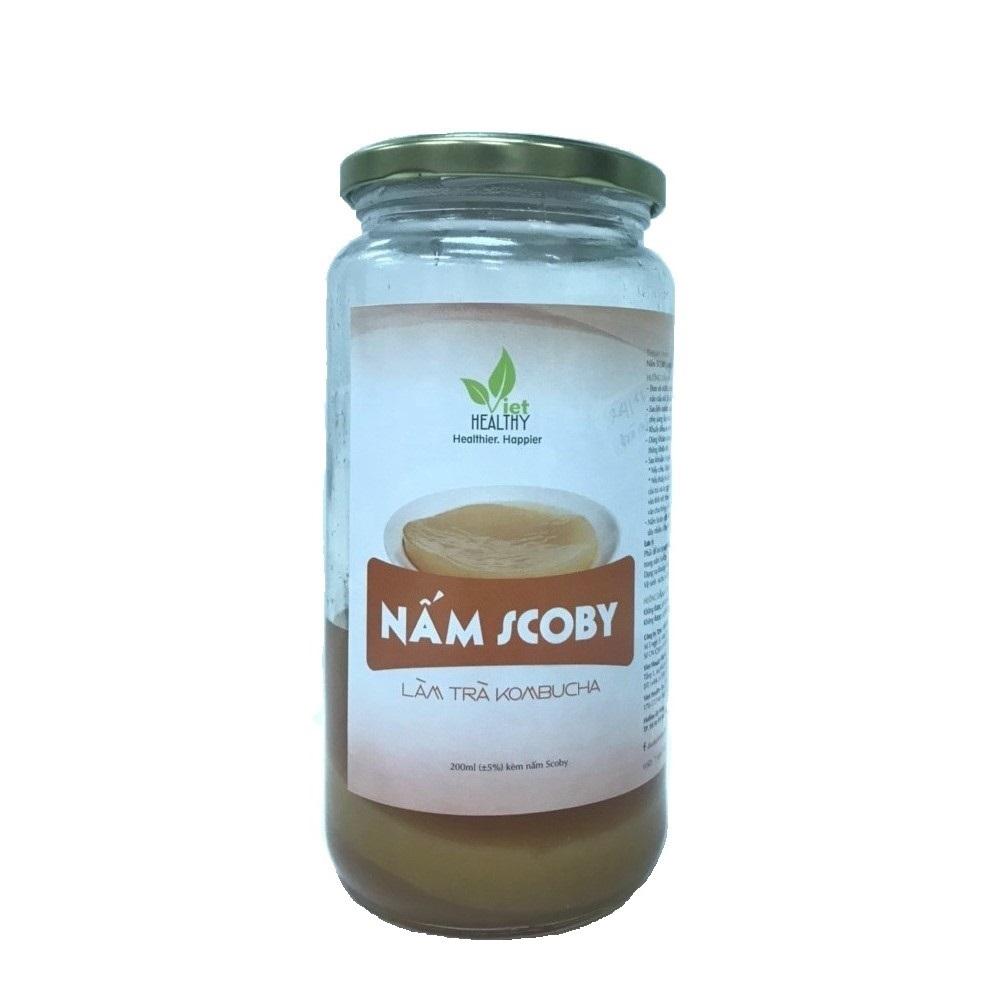 Nấm Scoby làm trà Kombucha